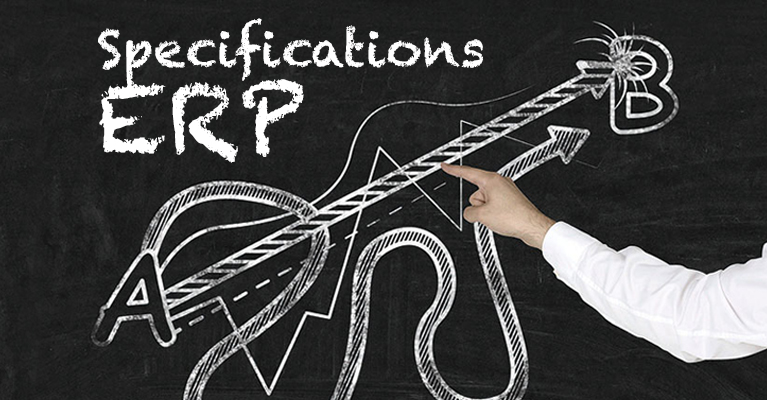 ERP Guideline: How requirement specifications work